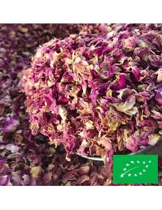 Pétales de rose d'Iran...